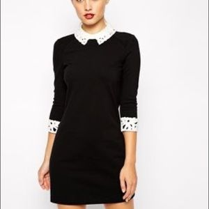 Ted Baker Currie dress black white lace collar